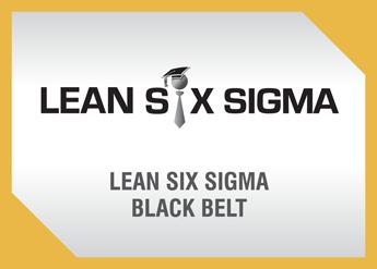 Lean Six Sigma Black Belt Online